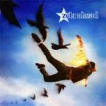 Zebrahead_phoenix