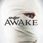 Skillet_awake